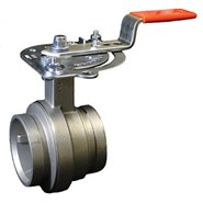 VIC SS 300 MASTERSEAL BUTTERFLY VALVE 461 w/GO - bim